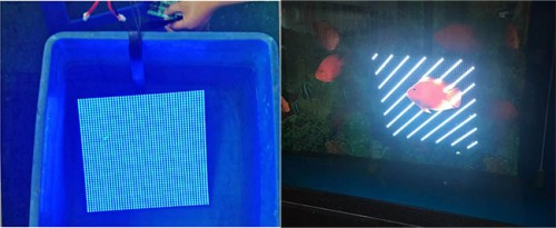 P8 front access led display panel 320x320 p8 Front Maintenance LED Display